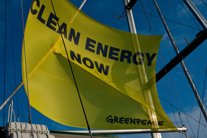 What Is Greenpeace's Environment Report Card?