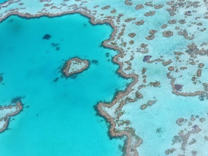 Is the Great Barrier Reef on the Mend?